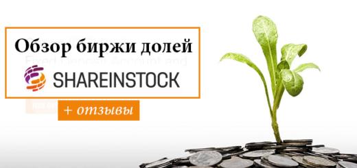 birzha-dolej-shareinstock-otzyvy