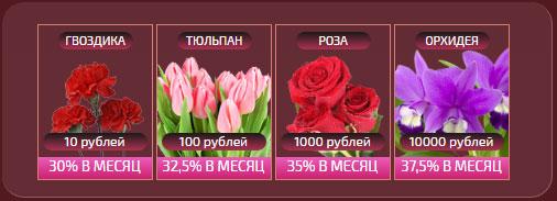 Luck Florist - инвестиционная игра с выводом реальных денег