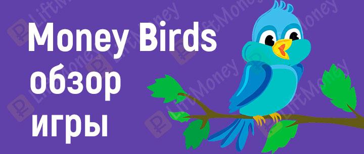 Money Birds: как зарабатывать на яйцах и отзывы об игре
